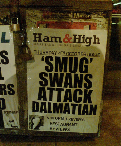 Swans Attack Dalmation Headline